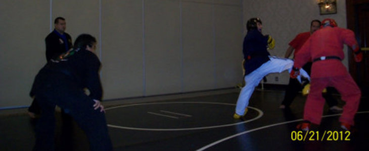 karate 730x300